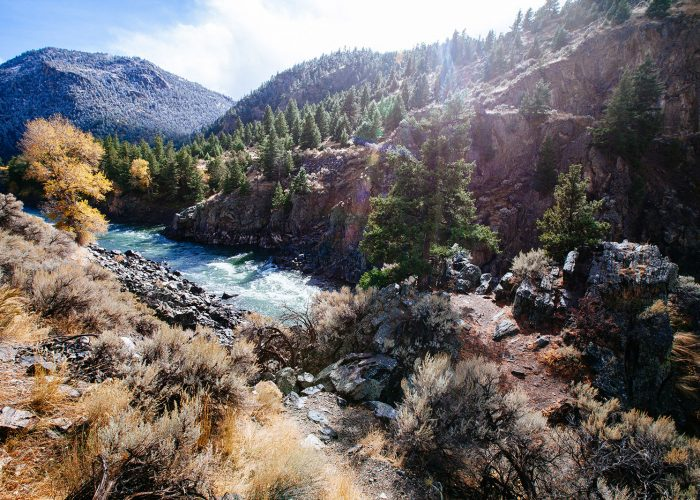 Pull off along Yellowstone River